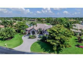 20451 Wildcat Run Dr, ESTERO, FL 33928 (#217031200) :: Homes and Land Brokers, Inc