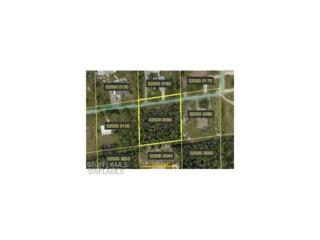 10400 Binky Ln, BONITA SPRINGS, FL 34135 (MLS #215055927) :: The New Home Spot, Inc.