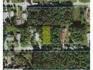 Woodside Ave, NAPLES, FL 34112 (MLS #216028508) :: The New Home Spot, Inc.