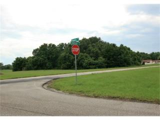 26481 Explorer Rd, PORT CHARLOTTE, FL 33983 (MLS #216043215) :: The New Home Spot, Inc.
