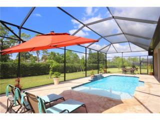 23184 Sanabria Loop, BONITA SPRINGS, FL 34135 (MLS #216067203) :: The New Home Spot, Inc.