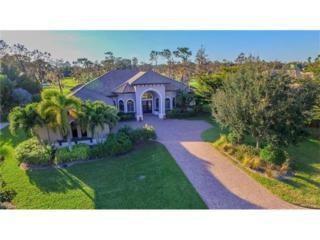 12531 Water Oak Dr, ESTERO, FL 33928 (MLS #217006097) :: The New Home Spot, Inc.