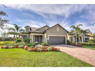 20462 Misty Woods Ct, ESTERO, FL 33928 (MLS #217007349) :: The New Home Spot, Inc.
