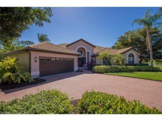 20138 Willow Bend Ct, ESTERO, FL 33928 (MLS #217009663) :: The New Home Spot, Inc.