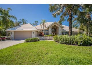 20272 Leopard Ln, ESTERO, FL 33928 (MLS #217015633) :: The New Home Spot, Inc.