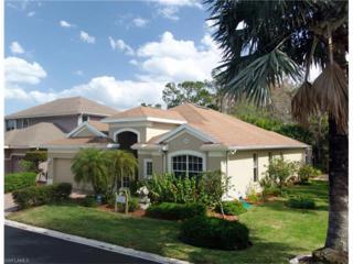 23097 Marsh Landing Blvd, ESTERO, FL 33928 (MLS #217022006) :: The New Home Spot, Inc.