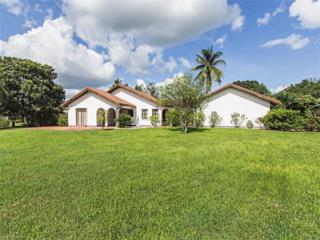 12286 Alamansa Ln, BONITA SPRINGS, FL 34135 (MLS #216053415) :: The New Home Spot, Inc.