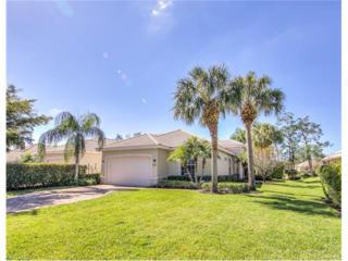 20621 Wildcat Run Dr, ESTERO, FL 33928 (MLS #217004700) :: The New Home Spot, Inc.