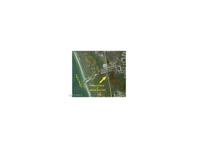 13105 Vanderbilt Dr, NAPLES, FL 34110 (MLS #217041376) :: RE/MAX Realty Group