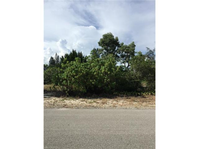 11077 Tangelo Ter, BONITA SPRINGS, FL 34135 (MLS #217052636) :: RE/MAX Realty Group
