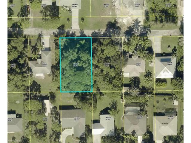 4559 Catalina Ln, BONITA SPRINGS, FL 34134 (MLS #217055214) :: The New Home Spot, Inc.