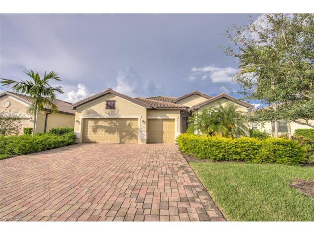 13504 White Crane Pl, ESTERO, FL 33928 (MLS #217056046) :: The New Home Spot, Inc.