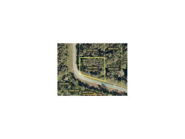 615 Delmonico St, LEHIGH ACRES, FL 33974 (MLS #217056991) :: The New Home Spot, Inc.
