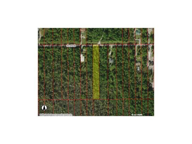 41ST Ave NE, NAPLES, FL 34120 (#217057972) :: Homes and Land Brokers, Inc