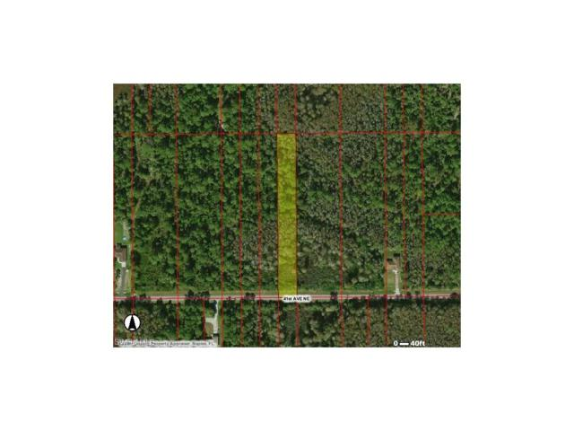 485 41st Ave NE, NAPLES, FL 34120 (#217057987) :: Homes and Land Brokers, Inc