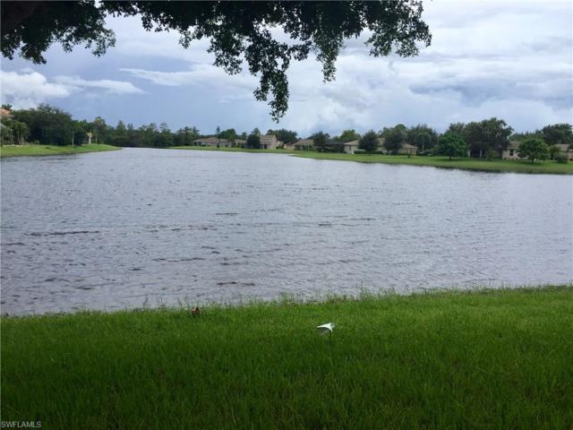 9384 Scarlette Oak Ave, FORT MYERS, FL 33967 (MLS #217062783) :: The New Home Spot, Inc.