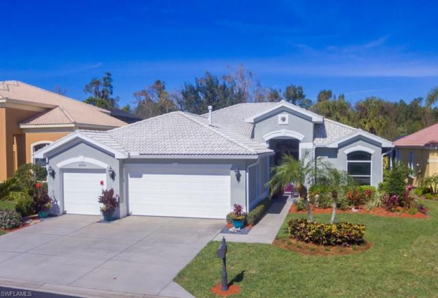 20520 Rookery Dr, ESTERO, FL 33928 (#218004753) :: RealPro Realty