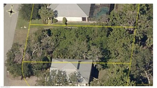 27259 River Royale Ct, BONITA SPRINGS, FL 34135 (MLS #218030277) :: The New Home Spot, Inc.
