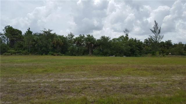 3335 NE 13th Ave, CAPE CORAL, FL 33909 (MLS #218049300) :: Clausen Properties, Inc.