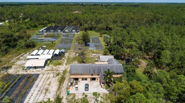4075 12th Ave NE, NAPLES, FL 34120 (MLS #218061011) :: The Naples Beach And Homes Team/MVP Realty