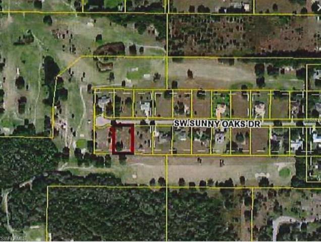 8077 SW Sunny Oaks Dr, ARCADIA, FL 34269 (MLS #218065222) :: Clausen Properties, Inc.