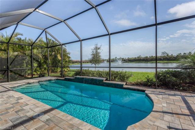 10218 Coconut Rd, ESTERO, FL 34135 (MLS #219013367) :: RE/MAX DREAM