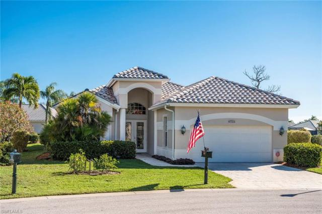24777 Goldcrest Dr, BONITA SPRINGS, FL 34134 (MLS #219013945) :: RE/MAX DREAM