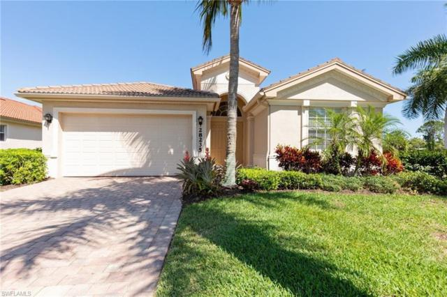 28235 Robolini Ct, BONITA SPRINGS, FL 34135 (MLS #219025991) :: #1 Real Estate Services