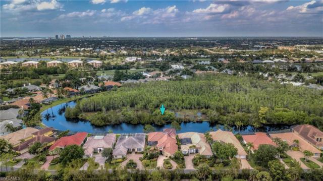 15246 Burnaby Dr, NAPLES, FL 34110 (MLS #219028188) :: The Naples Beach And Homes Team/MVP Realty