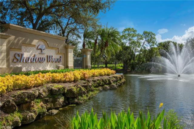 10382 Autumn Breeze Dr #101, ESTERO, FL 34135 (MLS #219039479) :: #1 Real Estate Services