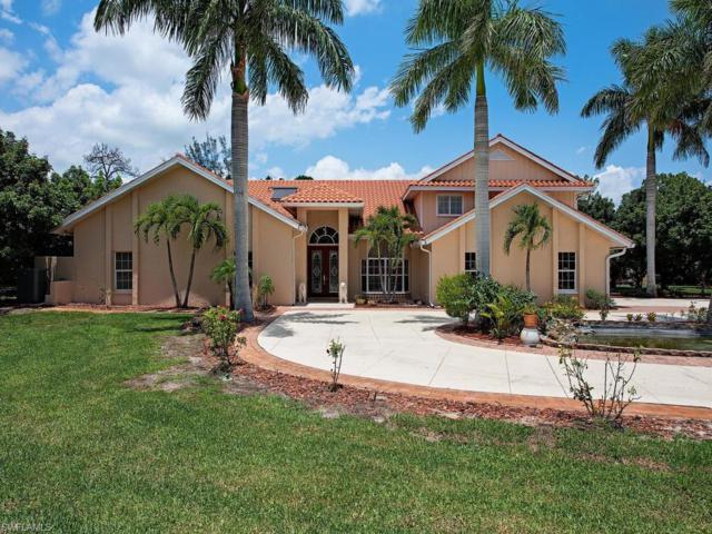 24500 Paradise Rd, BONITA SPRINGS, FL 34135 (MLS #219040166) :: Palm Paradise Real Estate