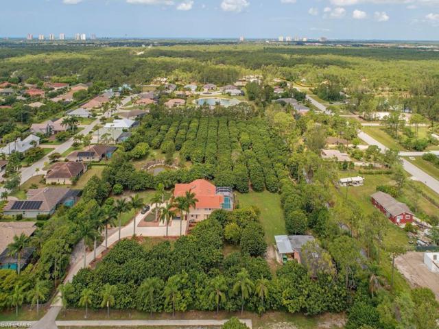 24530 Paradise Rd, BONITA SPRINGS, FL 34135 (MLS #219040186) :: Palm Paradise Real Estate