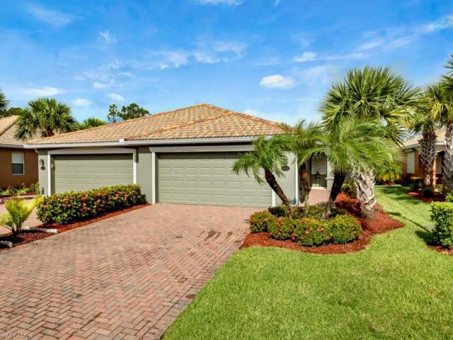 13242 Boccala Ln, ESTERO, FL 33928 (MLS #219048354) :: The Naples Beach And Homes Team/MVP Realty