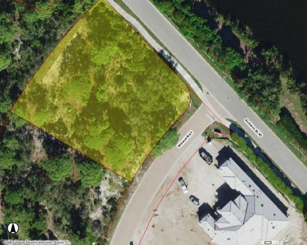 359 Warwick Way, NAPLES, FL 34110 (MLS #219048416) :: Sand Dollar Group