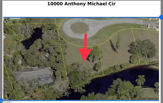 10000 Anthony Michael Cir, BONITA SPRINGS, FL 34135 (MLS #219072146) :: Waterfront Realty Group, INC.