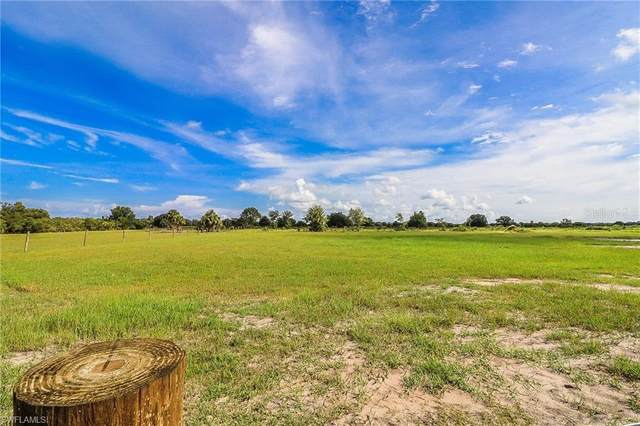 Burnt Store Road, PUNTA GORDA, FL 33955 (MLS #220052930) :: Florida Homestar Team