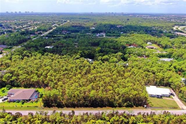 24344 Roger Dodger St, BONITA SPRINGS, FL 34135 (MLS #220054687) :: Kris Asquith's Diamond Coastal Group