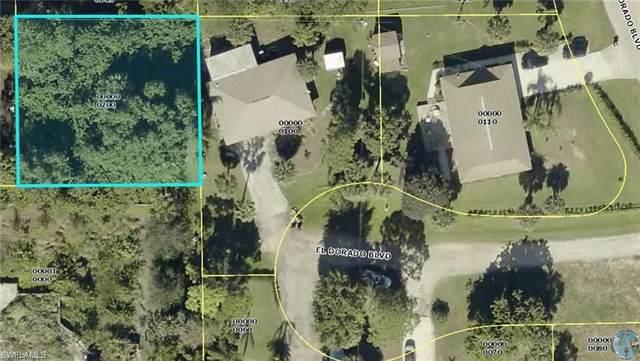 23436 Coconut Rum Ct, BONITA SPRINGS, FL 34134 (MLS #221003369) :: Clausen Properties, Inc.