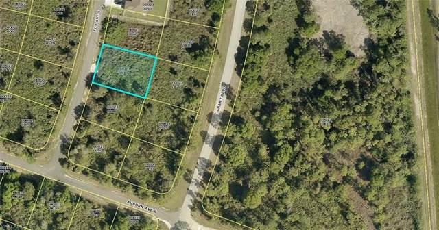 131 Fox Ave S, LEHIGH ACRES, FL 33974 (MLS #221003977) :: Premier Home Experts