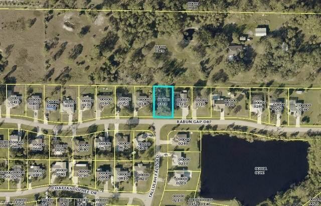 11379 Rabun Gap Dr, NORTH FORT MYERS, FL 33917 (MLS #221019188) :: Realty World J. Pavich Real Estate