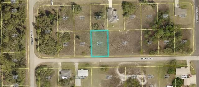 1143 Ebony St E, LEHIGH ACRES, FL 33974 (MLS #221035922) :: Eric Grainger | Jason Mitchell Real Estate