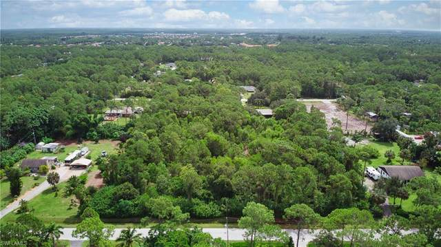 25357 Papillion Dr, BONITA SPRINGS, FL 34135 (MLS #221062724) :: The Naples Beach And Homes Team/MVP Realty