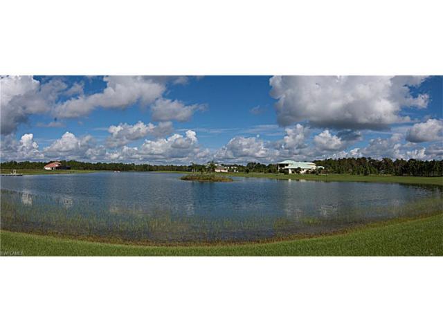 20201 Barefoot Ski Blvd, ESTERO, FL 33928 (MLS #216047391) :: The New Home Spot, Inc.