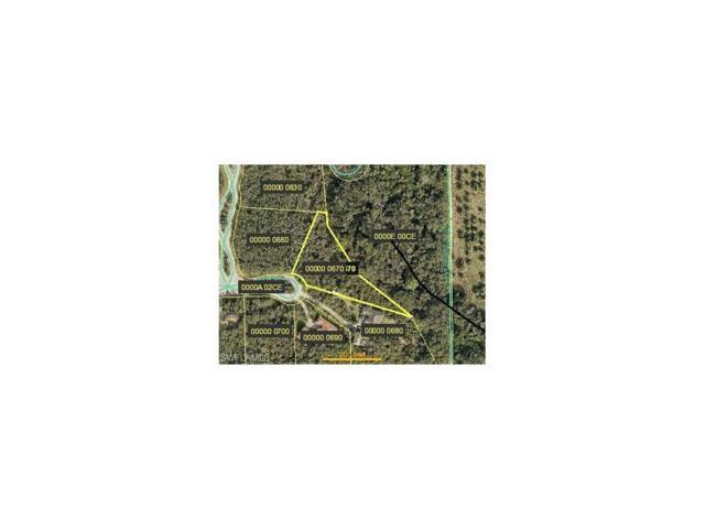 2100 Scrub Olive Ct, ALVA, FL 33920 (MLS #217001155) :: The New Home Spot, Inc.