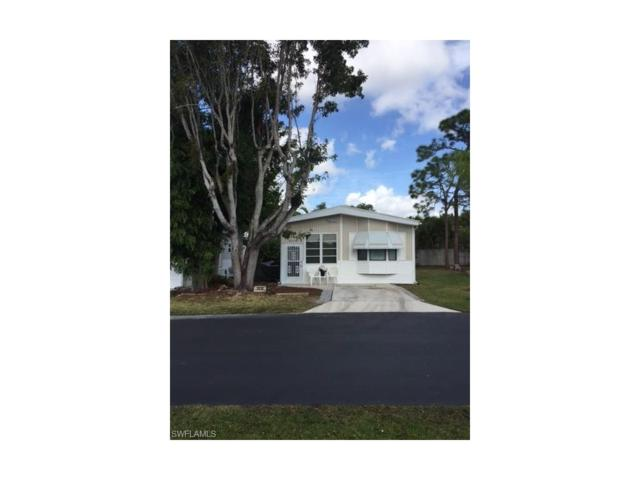 4510 Washington Way E, ESTERO, FL 33928 (MLS #217035303) :: The New Home Spot, Inc.