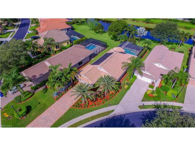 20311 Rookery Dr, ESTERO, FL 33928 (#217044060) :: Homes and Land Brokers, Inc