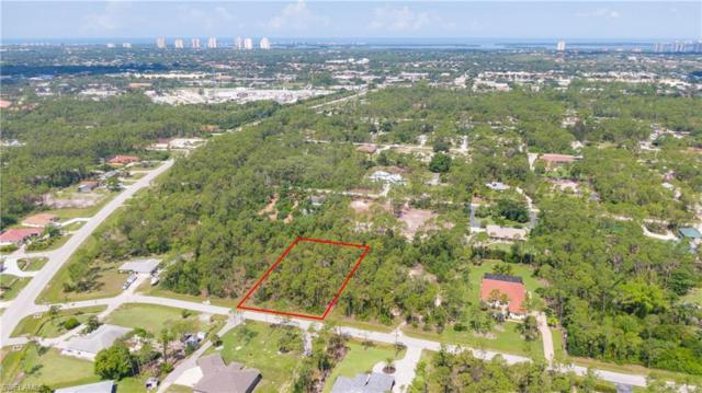 24708 Amarillo St, BONITA SPRINGS, FL 34135 (MLS #219044961) :: Palm Paradise Real Estate