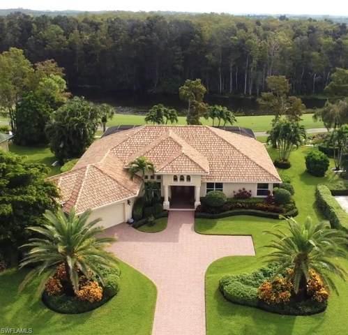 20127 Cheetah Ln, ESTERO, FL 33928 (#220066667) :: The Dellatorè Real Estate Group