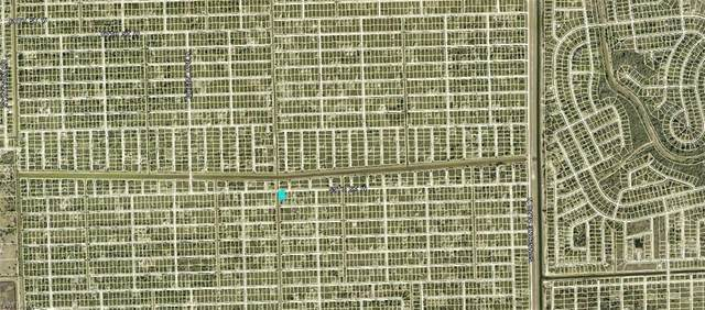 3017 59th St W, LEHIGH ACRES, FL 33971 (MLS #221041483) :: Bowers Group | Compass