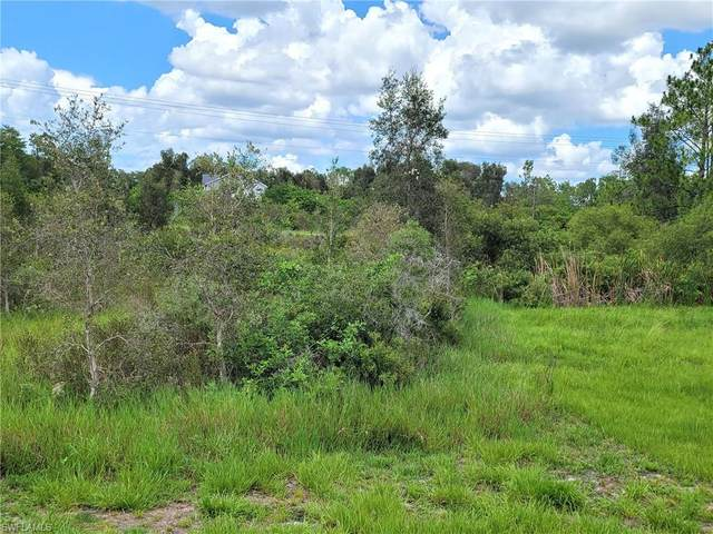2662 Meadow Rd, LEHIGH ACRES, FL 33974 (#221047485) :: The Michelle Thomas Team